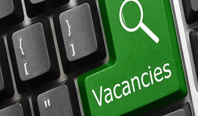 vacancy, content creator, social media manager, videographer, Thecable, business, internship, young graduates, media