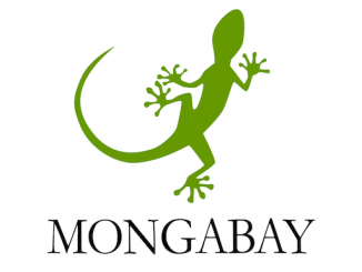 Mongabay Reporting Project